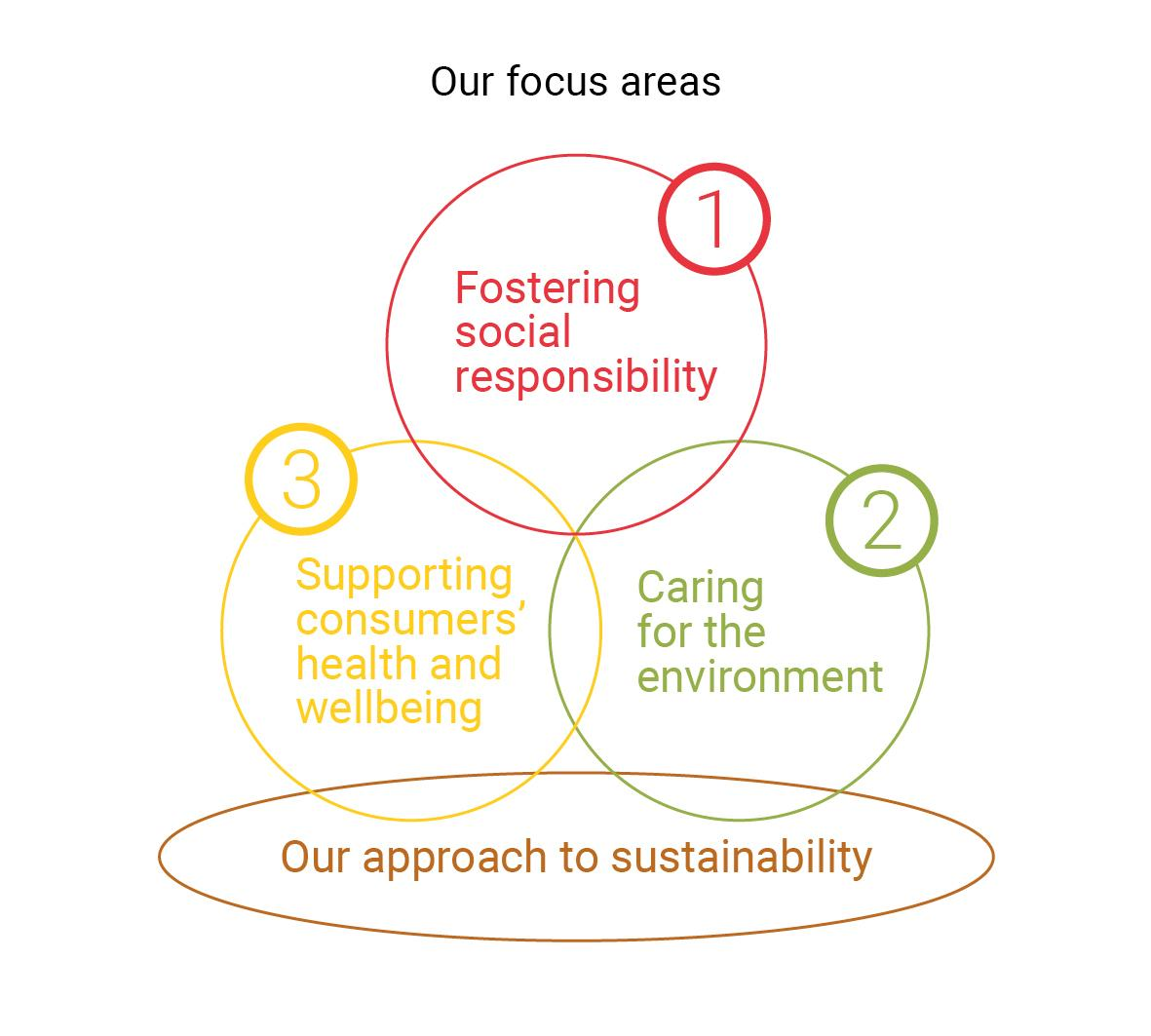 Sustainability focus areas 2018